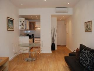 Jean Jaures 1 Bedroom Flat Located in Central Cannes - Cannes vacation rentals