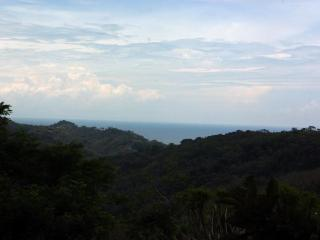 Comfortable 5 bedroom House in Dominical - Dominical vacation rentals