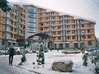 Perfect Borovets Studio rental with Internet Access - Borovets vacation rentals