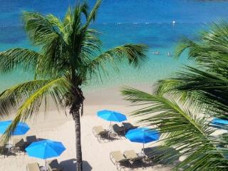 *PLEASE ENQUIRE - Special Rates on certain weeks. 3 bedroom beachfront villa - Gros Islet vacation rentals