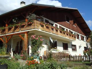 Nice Gite with Internet Access and Dishwasher - Macot-la-Plagne vacation rentals