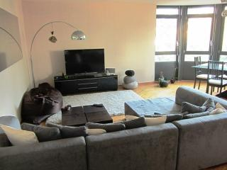 Nice Condo with Internet Access and Wireless Internet - Schaffhausen vacation rentals
