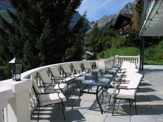 Nice Villa with Internet Access and Outdoor Dining Area - Engelberg vacation rentals