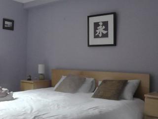 AJEM 5/1 Pirrie Street 2 bed - Edinburgh vacation rentals
