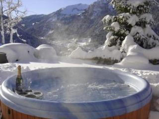 Chalet Lac de Vonnes (Close to village and lifts) - Chatel vacation rentals