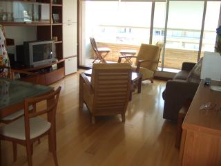 Nice Condo with Dishwasher and House Swap Allowed - Esposende vacation rentals