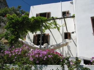 The endless Blue - Skyros Town vacation rentals