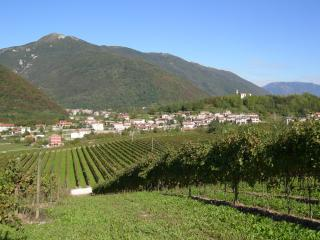 Nice 2 bedroom House in Cison Di Valmarino - Cison Di Valmarino vacation rentals