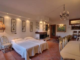 Nice 4 bedroom Villa in Varese - Varese vacation rentals