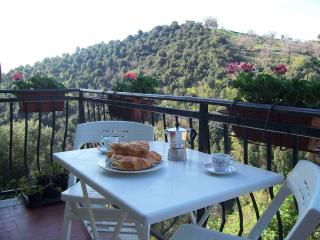 Casa Romantica in Pereta: quaint hilltop village - Pereta vacation rentals