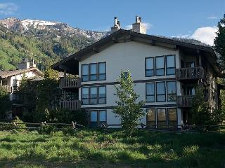 Sunny, spacious relaxation at the foot of ski hill - Teton Village vacation rentals