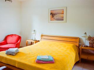 Luxury 4 Bed Villa on Pont Royal, w/ pool - Pont Royal vacation rentals