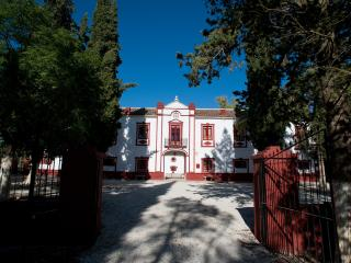 Casa Señorial Andaluza La Molina de las Monjas - Malaga vacation rentals