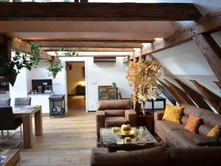 Luxury Collection - Trziste - Prague vacation rentals