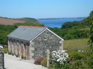 Pond Cottage - Helston vacation rentals