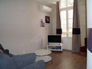 Lovely apart in the center / rue Porte Basse - Bordeaux vacation rentals