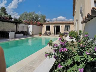 Luxe Villa only 45 m. nice airport, 30m Cannes - Saint-Paul-en-Foret vacation rentals