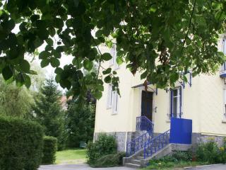 Villa Boule de neige - Gerardmer vacation rentals