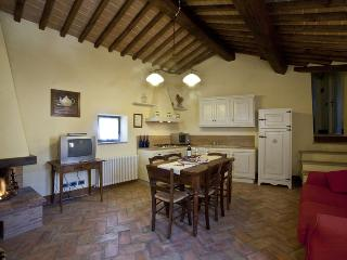 Apartment aquila - Colle di Val d'Elsa vacation rentals