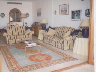 Cozy 2 bedroom Apartment in San Luis de Sabinillas - San Luis de Sabinillas vacation rentals