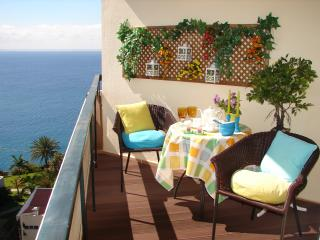 BRIGHT, COZY and ROMANTIC !!! - Sao Martinho vacation rentals