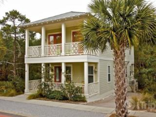Monkey Business - Inlet Beach vacation rentals