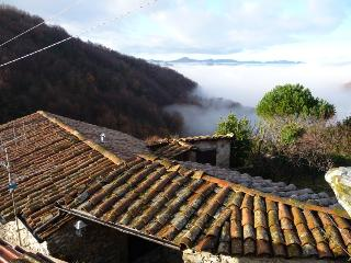 Nice 1 bedroom Casola in Lunigiana Apartment with Television - Casola in Lunigiana vacation rentals
