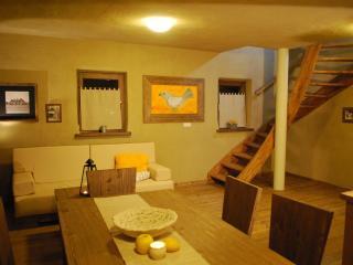 Spacious duplex near spa&golf - Moravske Toplice vacation rentals