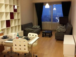 ISTANBUL DAILY RENT RESIDANCE - Istanbul vacation rentals