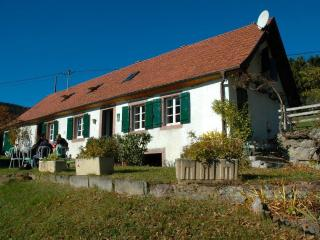 Paradis sur la route des vins / PARADISE IN ALSACE - Thannenkirch vacation rentals