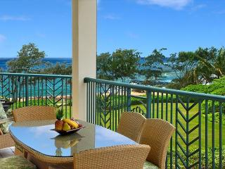 G301 Executive SUITE! ocean/ Large/ FAST wifi WOW - Kapaa vacation rentals