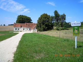 Nice Gite with Dishwasher and Kettle - Châtillon-sur-Indre vacation rentals