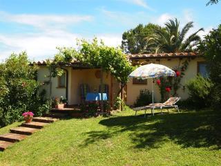 1 bedroom House with Internet Access in Campagnatico - Campagnatico vacation rentals
