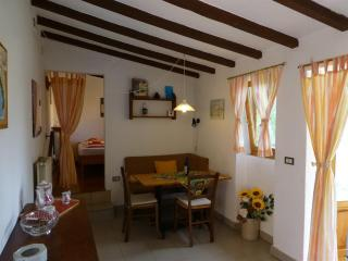 Nice 1 bedroom Campagnatico House with Internet Access - Campagnatico vacation rentals