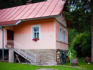 3 bedroom Cottage with Internet Access in Ruzomberok - Ruzomberok vacation rentals