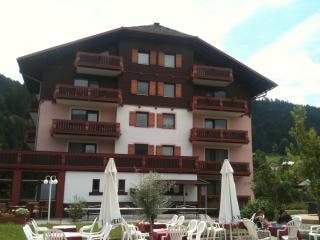 Ski apartment, Dachstein West, - Gosau vacation rentals