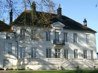 Nice Chateau with Internet Access and Central Heating - Dijon vacation rentals