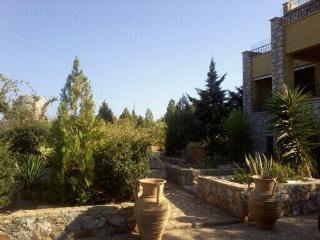 Nice 1 bedroom Condo in Kefalas - Kefalas vacation rentals