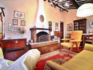 Casa Lyda-tra viti e ulivi con panorama su Lucca - Lucca vacation rentals