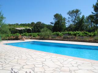 Bastide des Vignes - Cotignac vacation rentals