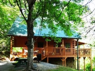 Specials...VIEW - Clean - PRIVATE-  Max 6 people!! - Gatlinburg vacation rentals