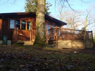 The Nest - Bradworthy vacation rentals