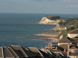 sea views close to town, safe garden pets welcome - Ventnor vacation rentals