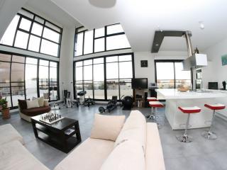 Chambres d'hôtes Villa sur le toit Port Marianne - Montpellier vacation rentals
