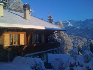 Nice Chalet with Internet Access and Grill - Villars-sur-Ollon vacation rentals