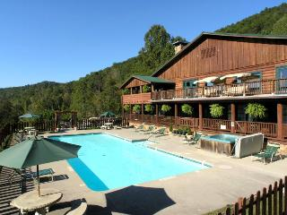 Retreats and Family Reunions love it in Elk Lodge-10 bedrooms! - Townsend vacation rentals