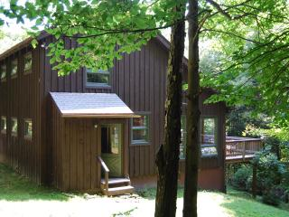 Berkshire home on 27acres. Pet OK. No extra fees - Hancock vacation rentals