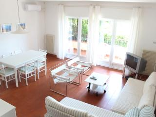 Fully air conditioned flat, WIFI and swimming pool - Malcesine vacation rentals