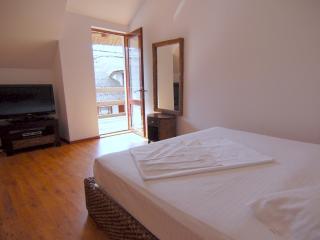 Bright 10 bedroom Resort in Crisan - Crisan vacation rentals