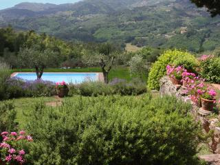 Villa Le Monache in Lucca area - Province of Lucca vacation rentals
